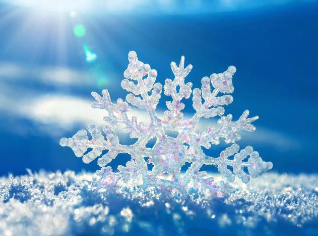 Transporte escolar: información sobre el temporal de nieve